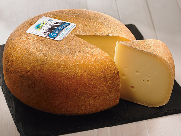 Learn all about the Artisan Cheeses we offer